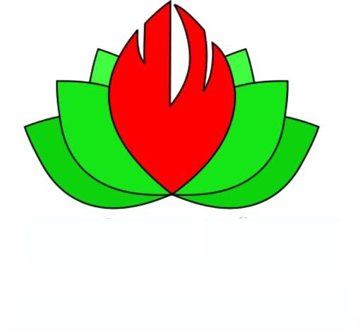 شکلات گاناش